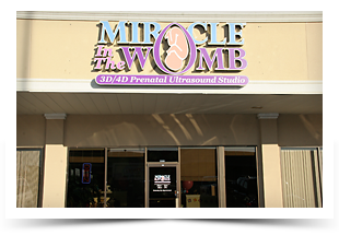 Miracle In The Womb - Storefront